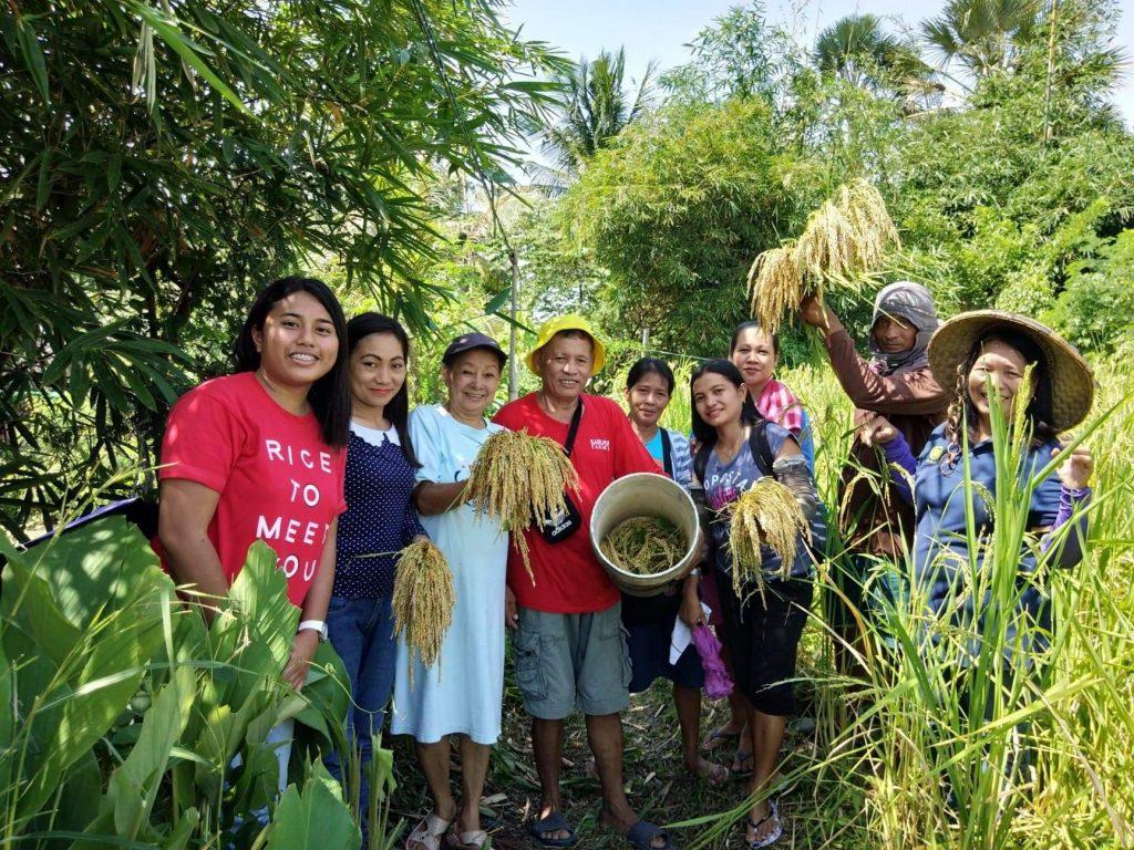 Senior citizen's Quezon farm is the product of hard work